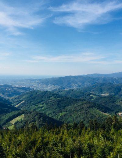 Ausblick Landschaft